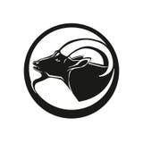 Голова козы Стоковая Фотография