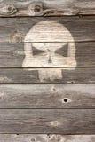 Голова косточки на деревянной предпосылке Стоковые Изображения