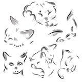 Голова котов спать иллюстрация вектора
