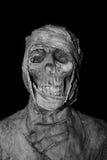 Голова крупного плана мумии на предпосылке Стоковое Изображение RF