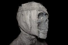Голова крупного плана мумии на предпосылке Стоковое Изображение