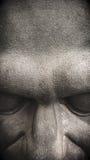 Голова металла каменная Стоковые Изображения RF