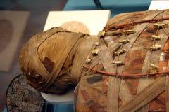 Голова мумии Egyption Стоковые Фото