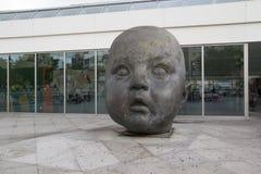 Голова младенца Стоковое Изображение RF
