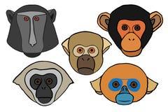 Голова обезьяны вектора богато украшенная Стоковое фото RF