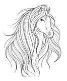 Голова лошади в линии стиле искусства Татуировка ART Картина Изолированный элемент иллюстрация вектора