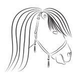 Голова лошади в стиле эскиза. Стоковая Фотография RF