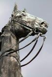 Голова лошади Цинциннати Стоковое Изображение RF