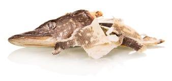 Голова посоленных рыб и чистки на белизне Стоковое Изображение