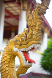 Голова дракона на тайском виске Стоковые Изображения RF