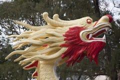 Голова дракона Стоковая Фотография RF