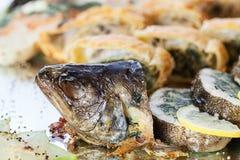 Голова рыб стоковые изображения rf