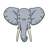 Голова слона Стоковые Изображения