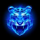 Голова тигра огня иллюстрация вектора