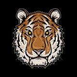Голова тигра также вектор иллюстрации притяжки corel Стоковое Фото
