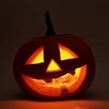 голова тыквы хеллоуина Джек-o'-фонариков Стоковые Изображения