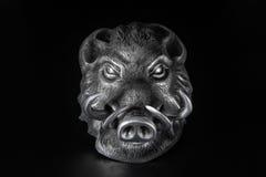 Голова хряка Стоковая Фотография