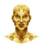 Голова человека утюга Стоковое фото RF