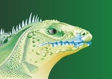 Голова ящерицы Стоковые Изображения RF