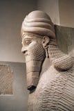 Голова Sumerian Annunaki стоковые изображения rf