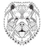 Голова zentangle собаки чау-чау Chow стилизованная, freehand карандаш, нарисованная рука, картина Искусство Дзэн Богато украшенны иллюстрация вектора