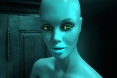 Кукла дисплея Стоковая Фотография RF