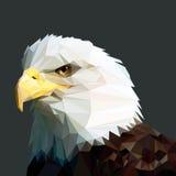 Головка облыселого орла иллюстрация штока