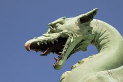 Головка дракона Стоковые Фото