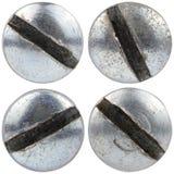 Головки винта изолированные на белизне Стоковые Изображения RF