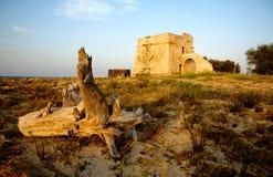Головная башня Стоковые Фотографии RF