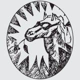 головная лошадь Стоковое Изображение RF