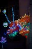 Головное освещение дракона Стоковые Изображения RF
