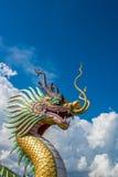 Головной дракон Стоковое Изображение