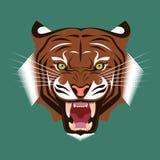 головной тигр Стоковые Фото