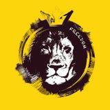 головной львев вычерченная рука Стоковое Изображение