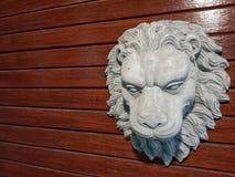 головной львев Стоковые Изображения RF