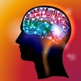 Головные нейроны Стоковое Фото