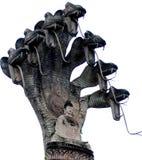 7-головый изолят змейки Стоковые Фото