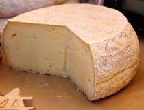 Головы сыра фермы естественные органические Стоковые Фото