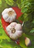 2 головы чеснока и петрушки Стоковая Фотография RF