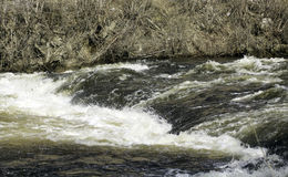 Голодает вода Стоковые Изображения RF