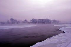 Гололедь зимы Стоковая Фотография RF