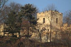 Голодная стена в Праге Стоковая Фотография RF