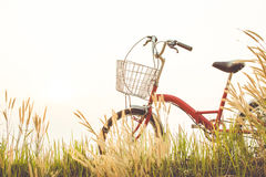 Год сбора винограда велосипеда на поле травы Стоковые Изображения