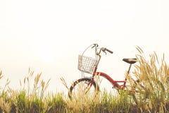 Год сбора винограда велосипеда на поле травы Стоковое фото RF