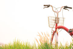 Год сбора винограда велосипеда на поле травы Стоковое Изображение