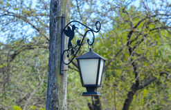 Год сбора винограда выковал уличный свет, вися на поляке Стоковые Фото