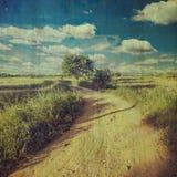 Год сбора винограда проселочной дороги и поля с текстурой Стоковые Фото