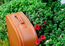 Год сбора винограда сумки Стоковое Изображение RF