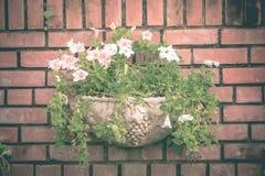 Год сбора винограда тона цветочных горшков фото стоковое изображение